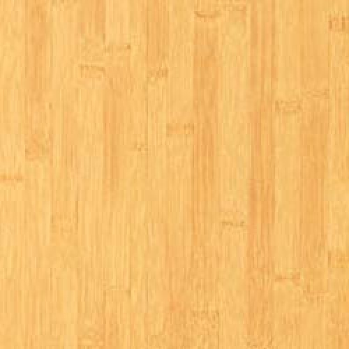 Alloc Bamboo Laminate Flooring In The Lakes, NV 88901